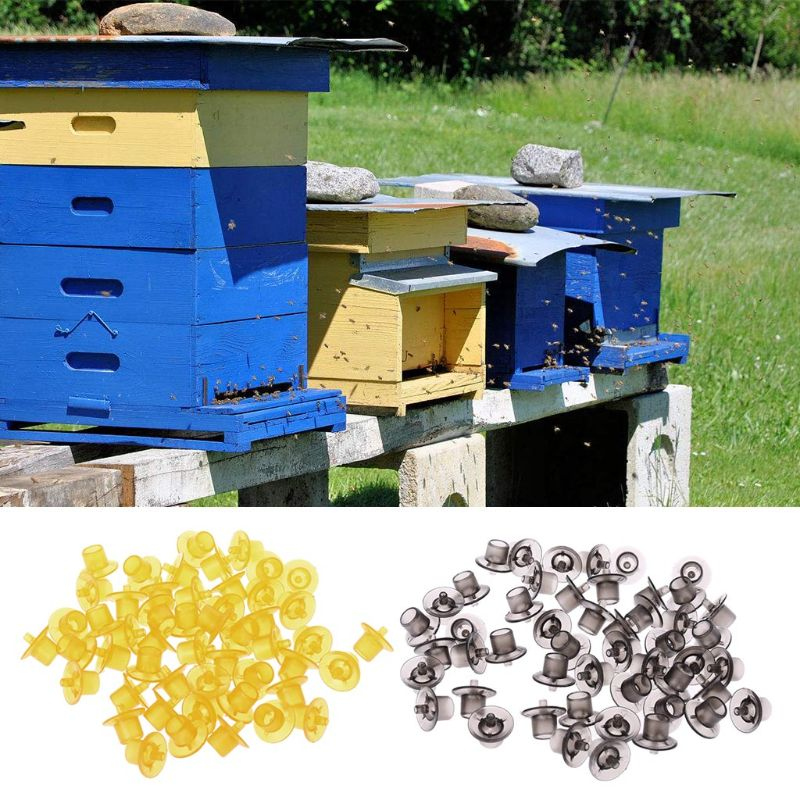50pcs Plastic Beekeeping Cell Cup Kit Bee Queen Rearing Cell Cups Container Tool Equipment in Beekeeping Tools from Home Garden