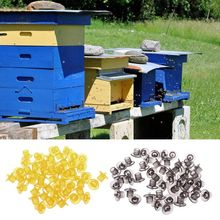 50pcs 플라스틱 양봉 셀 컵 키트 꿀벌 여왕 양육 셀 컵 컨테이너 도구 장비