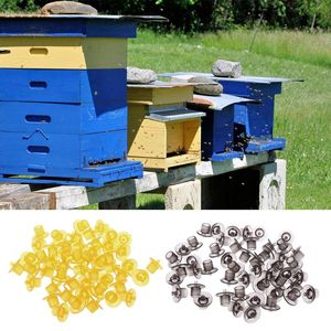 Image 1 - 50pcs 플라스틱 양봉 셀 컵 키트 꿀벌 여왕 양육 셀 컵 컨테이너 도구 장비