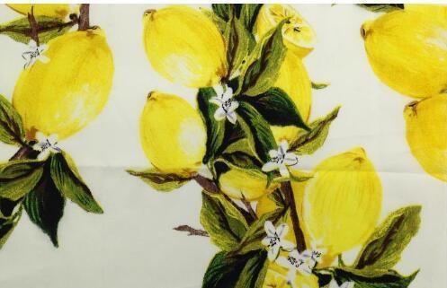 Lemon Fruit Imprimé Manches Courtes Robe Portefeuille Femmes Roman Originals