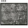 1pcs New Flower Beauty Printing 30.5x25cm Big Size Stamping Plates Nail Art Polish Templates Stencils Salon Tips XXL-01