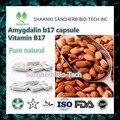 Natural cápsulas de vitamina b17 Amêndoa amigdalina extrato em pó, cápsulas de 500 mg * 200 pcs frete grátis