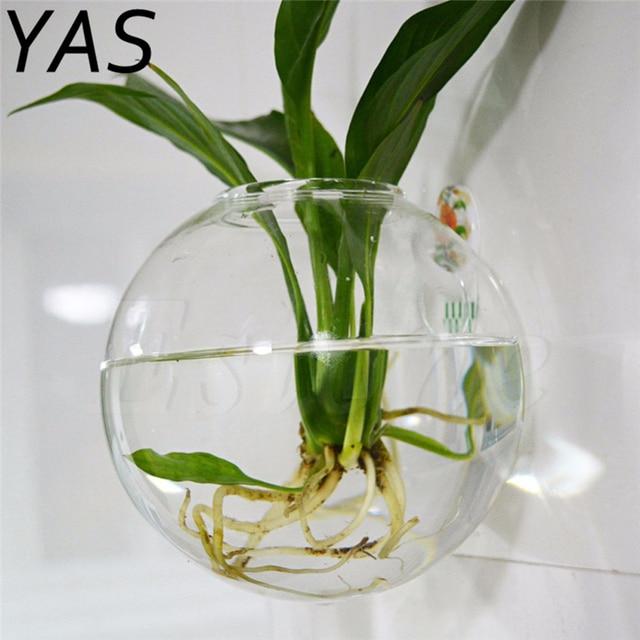 6d048564b Transparente cristal claro redondo terrario contenedor flor planta colgante  hidropónico bola hogar de la boda decoración
