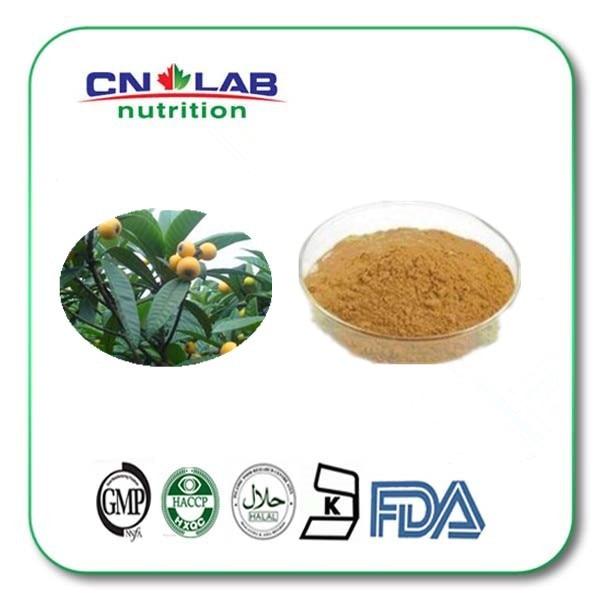 Pharmaceutical Raw Materials Price-ursolic Acid/Loquat Leaf Extract 1kg