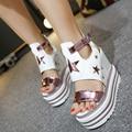 Лето ночной клуб 14 см супер высоких каблуках туфли на платформе в высших склон с водонепроницаемой полые сексуальные сандалии женщин