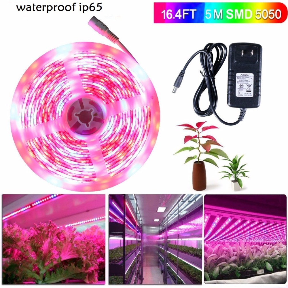 5m 5050 LED Grow Lights DC 12V waterproof Growing LED Strip Plant Growth Tape Fita De Light Set with Power Adapter zdm 5m 72w led plant light strip 300pcs 5050 5 red 1 blue group dc 12v