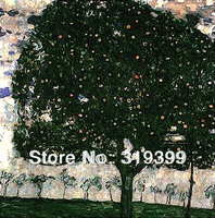 Gustav Klimt Oil Painting Reproduction On Linen Canvas Apple Tree II 24X24 Free Fast Ship Handmade