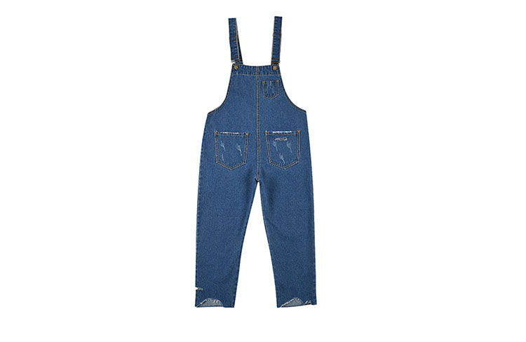 Stylish suspender jeans. College style, casual denim pants. (1)
