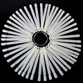 50 Pieces False Display Nail Art Fan Wheel Polish Practice Tip Sticks Design Decor Set New PL9