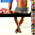 ropa interior,transparent back underwear,new 2013,panties men2 pcs a lot free shipping