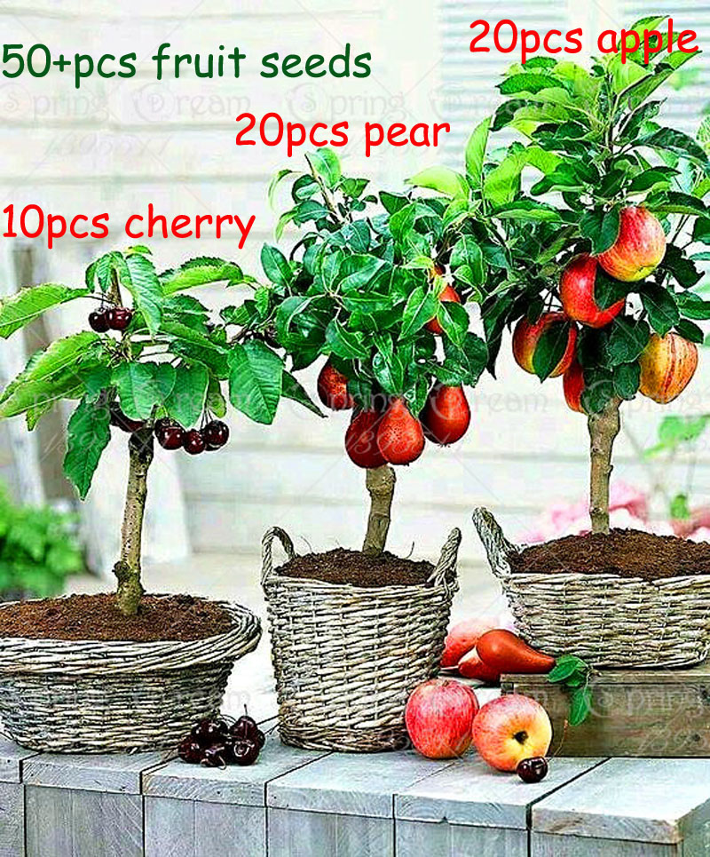 яблоки заказать на aliexpress