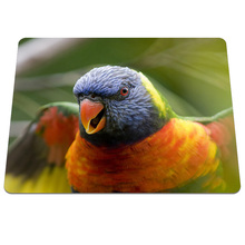 Ner Style Parrot Birds Close Up Pattern Durable Mousepad Soft RUbber Desk Mice Mat Gamer Gaming Speed Pc Computer Mouse Pads