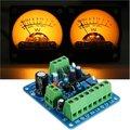 Nivel de Audio Amp Tablero de Conductor Con Dos VU Meter Envío Gratuito