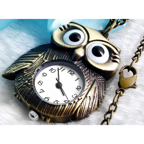 Bronze Night Owl Necklace Pendant Quartz Steampunk Pocket Watch Chain for Men Wo