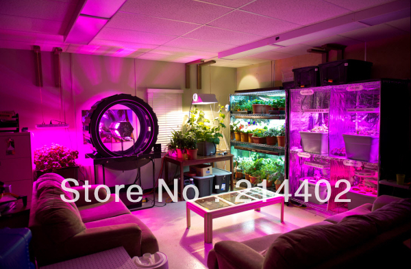 Special Link To Pay Additional Fees:   Led Grow Light  And Led Aquarium Light Factory In Shenzhen