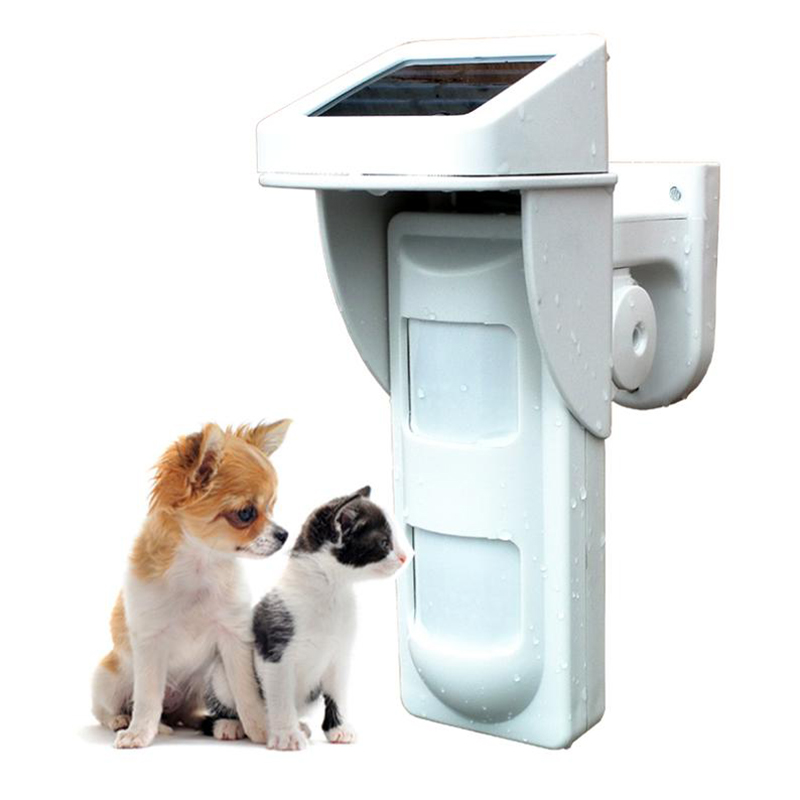 Pet Motion Sensor 433.92MHz Wireless Outdoor Dual-PIR Motion Detector Waterproof Solar Power panel King Pigeon PIR-100D