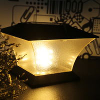 Thuis Outdoor Solar LED Lampen Solar Kolom Hoofd Licht Villa Muur Landschap Tuinverlichting Automatische Lichtregeling