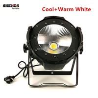 Led Par Light COB 100W High Power Aluminium Case With Barn Door White DJ DMX Led