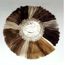 100 человеческие волосы мужские парики цвет кольцо, новое изображение цвет волос кольцо