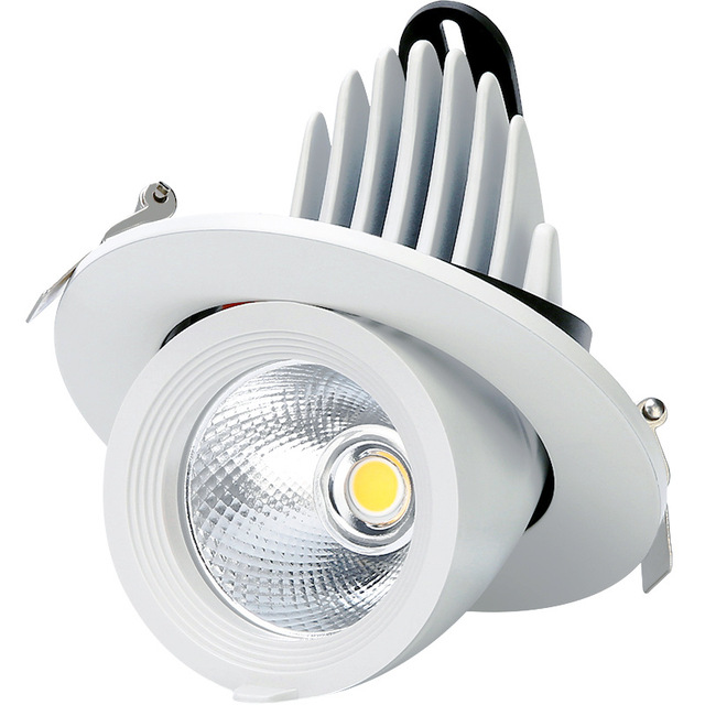 Trunk Shape Design LED Downlight COB 10W 15W 25W 30W Recessed LED Ceiling Spot Light 360 Degree Adjustable AC110V 220V Dimmable