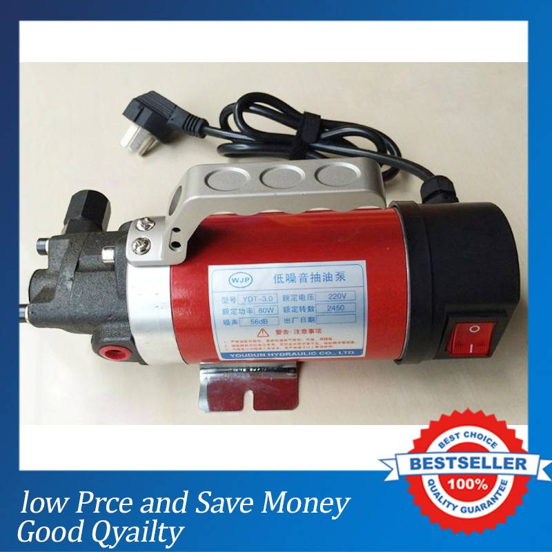 Hot Sale Electric Oil Pump 220V 2.5L/min Hydraulic oil Gear Oil Transfer Pump cast iron micro oil transfer pump 12v electric 5l min gear oil pump