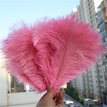 5pcs Feather wall DIY Pink ostrich feathers Photographing feathers wall background Wedding dress decoration feather props AC092 ostrich feather 10 25cm white pink feathers for bracelet ring jewelry lipstick cosmetic ins photography background accessories