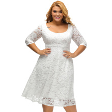 Vintage Lace Women's Three Quarter Sleeve Dress