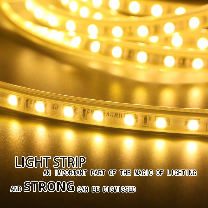 Puluoti Colorful Changeable Waterproof 1M Rgb Lamp Belt