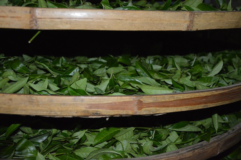 Инструменты для кулинарии 2016 250 Tieguanyin ,
