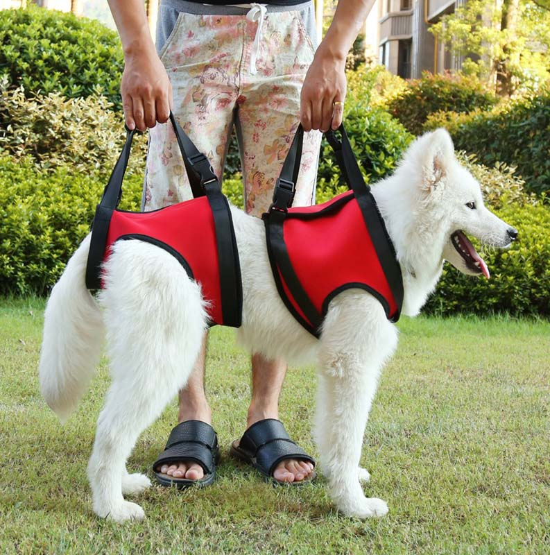 Dog Lift Harness Comfortable Soft and Luxurious - Help Lifts Older Dogs or Young Puppies - Helps with Arthritic and Weak Joints