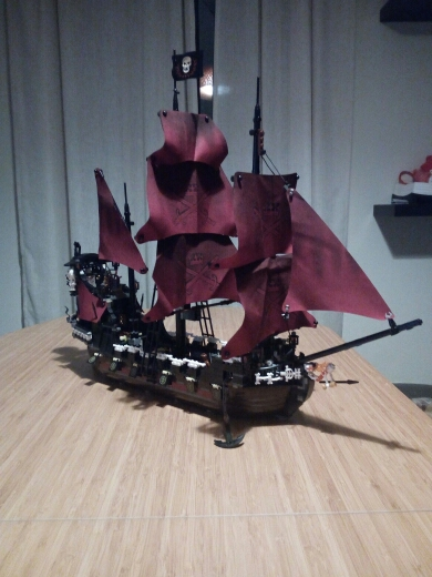 Blocos 16006 & 16009 piratas do Classification : Assemblage