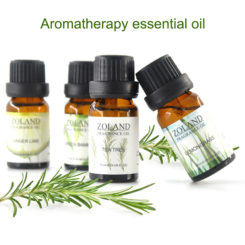 Natural Plant Essential Oil Aromatherapy Oil Fragrance Aroma SPA Relax Essential Oils 2019 Hot Sale DFA in Massage Relaxation from Beauty Health