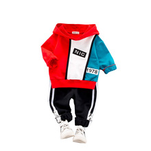 2019 Autumn Baby Boy Clothing Sets Winter Toddler Girl Hooded Sweatshirt Pants Suit Children Clothing Tracksuit Kids Clothes Set цены