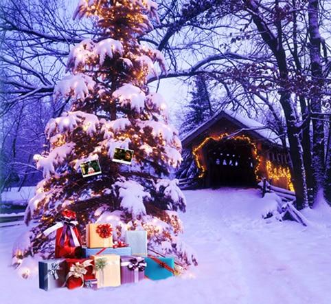 10X10ft thin vinyl photography Elk snow pine tree backgrounds christmas backdrop for Photo studio CM-6309 10x10ft vinyl custom photography backdrop prop lace theme photo studio backgrounds jla 5199