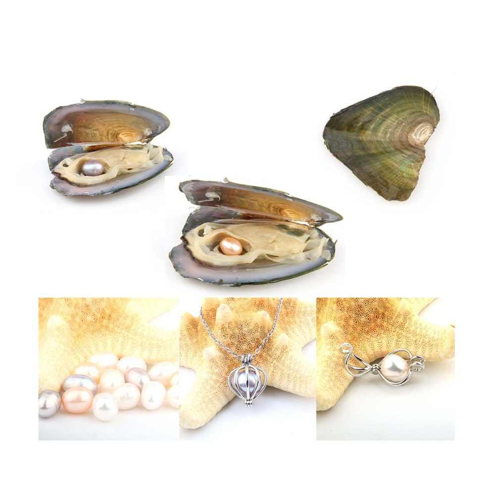 Pearl Oysters with Rice 7-8 mm Love Wish Real Freshwater Pearl and Nacklace Set (Chain 55cm)