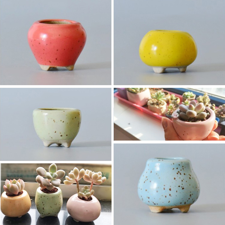 34 Style Mini Ceramic  Succulent Plant Shape Flowerpots Aninmal Flowerpot Series Fleshy Home Garden Decoration Garden Pots