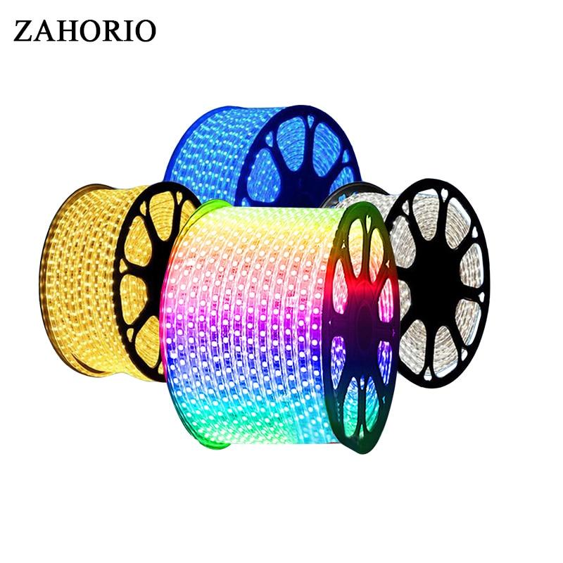 RGB 220VSMD 5050 Led Strip Flexible Light1M 3M 5m 10m 15m Warm White/white Bule Red Power Plug 60leds/m Waterproof Led Strips