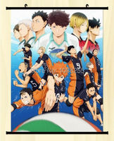 Haikyuu!! Shoyo Hinata Shonen Home Decor Poster Wall Scroll Anime Janpanese New