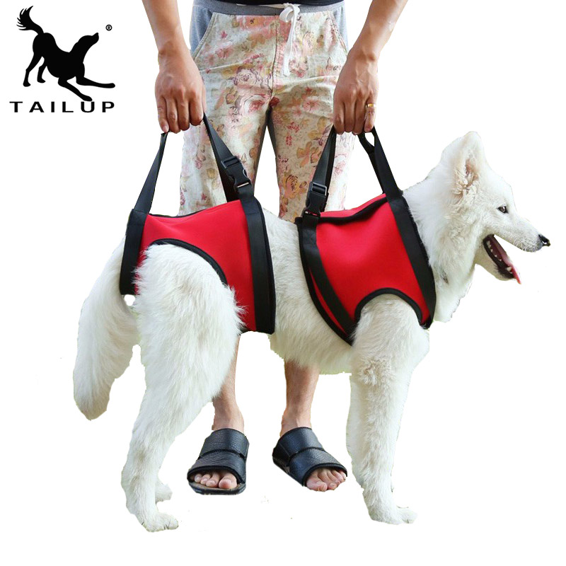 [TAILUP] Dog lifts support vest pet help products chien collar leash dog harness with a handle lifting harness for dogs py0015