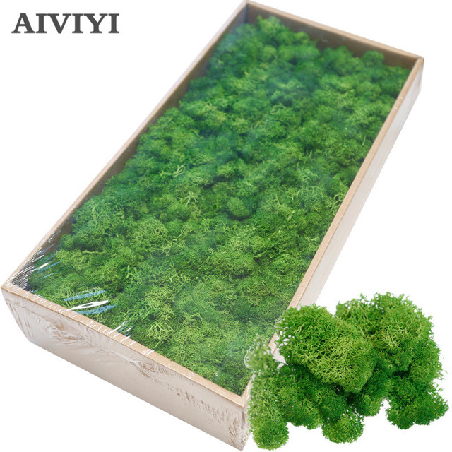 High quality artificial green plant immortal fake flower Moss grass home living room decorative wall DIY flower mini accessories 1