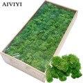 Высокое качество искусственные зеленые горшечные растения бессмертные поддельные цветы мох трава для дома гостиной декоративные стены DIY ...