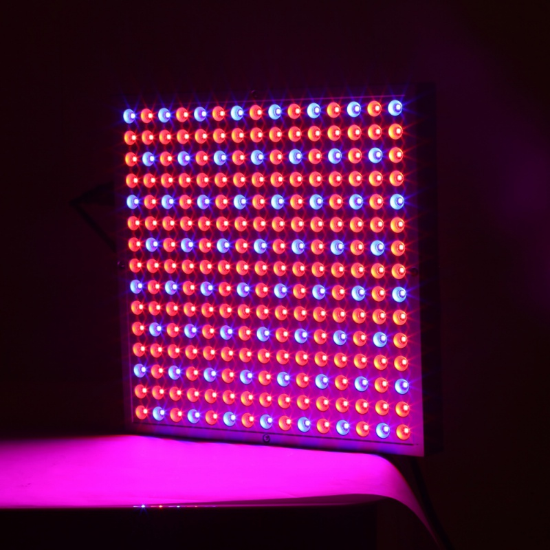 45W 225Leds AC85~265V LED Grow Light for Flowering Plant Tent Acquarium and Hydroponics System Garden
