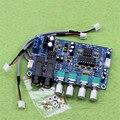 Двойная мощность AC12V Кара ОК реверберации пластины реверберации микрофон усилитель доска К песню оборудования (H5A5)