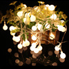 10M 100LED Ball Lantern String Lights Fairy Lights Wedding Christmas Party Decoration Outdoor Lighting EU Plug