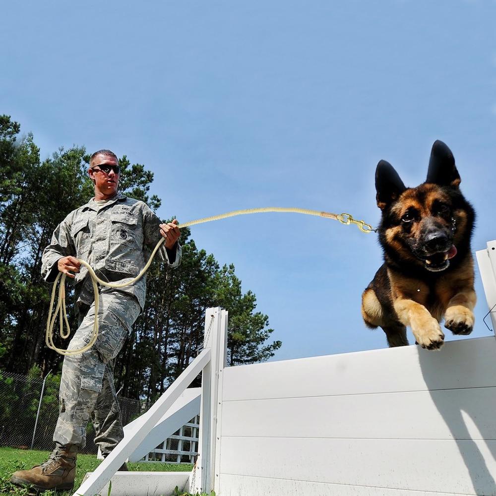 Durable Dog Tracking Leash Nylon Long Leads Rope Pet Training Walking Leashes 3m 5m 10m 20m For Medium Large Dogs Non-slip 17