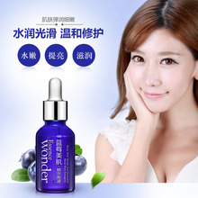 Skin Care Blueberry Hyaluronic Acid Liquid Anti Wrinkle Anti Aging Collagen Pure Essence Whitening Moisturizing Day Cream