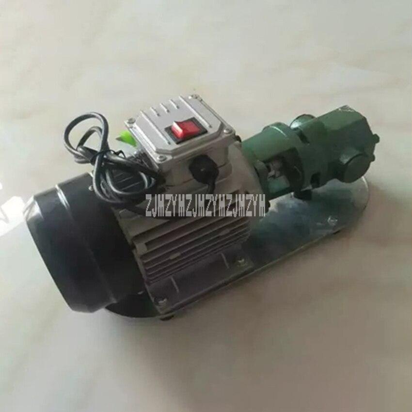 WCB-75 pompe à huile à engrenages auto-amorçante Portable en fonte haute température pompe à engrenages électrique 750 W petite pompe à huile à haute viscosité 220 V