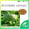 Mejor calidad natural extracto de alcachofa de jerusalén 500 g/lote