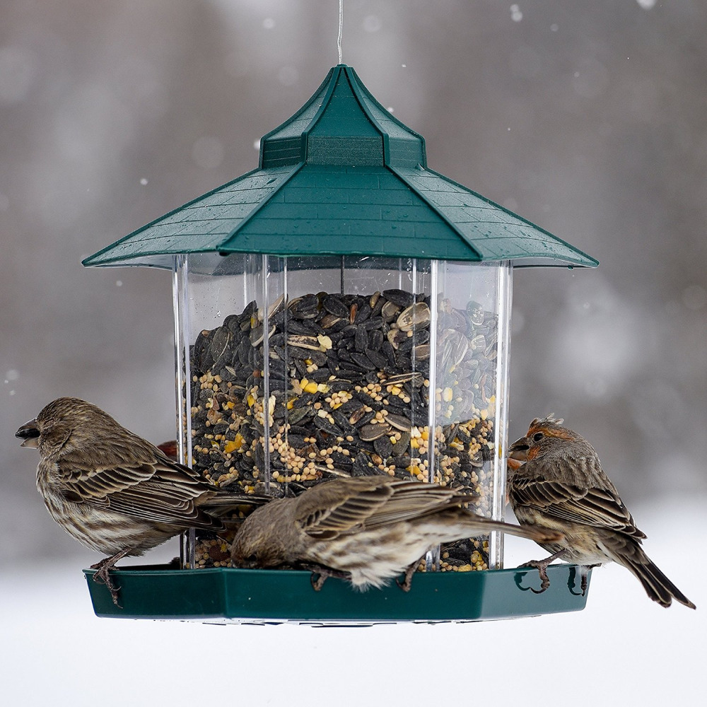 Popular automatic bird feeder buy cheap