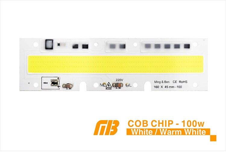 COB CHIP_05